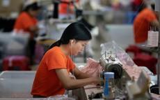 """Động thái """"lạ"""" của Trung Quốc giữa lúc chiến tranh thương mại với Mỹ leo thang"""
