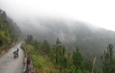 Phát hiện thi thể nữ giới đang phân hủy trong rừng rậm ở đỉnh Mẫu Sơn