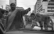 """[Photo Essay]: Cuộc sống thực ở nơi nhiều người tưởng là """"chiến địa"""" khủng bố, đánh bom"""