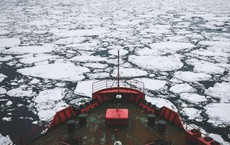 Lần đầu tiên con người làm được chuyện này ở biển Bắc Cực, và nó cho thấy một hiện thực đáng ngại