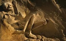 Hóa thạch 85.000 năm tuổi ở Saudi Arabia ẩn chứa bí mật mới của loài người