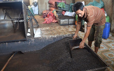 (SỐC) Phát hiện nhiều mẫu cà phê bột không có… cà phê ở Đắk Nông!