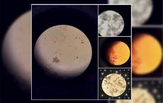 Sự thật đằng sau loạt ảnh đậm chất thiên văn học được chia sẻ trên mạng xã hội sáng nay