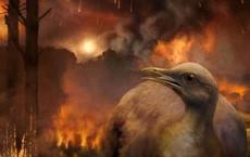 Cùng phải chịu thảm họa thiên thạch nhưng vì sao khủng long tuyệt chủng, chim thì không?