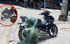 Công an Thanh Hóa 'quăng lưới' bắt người vi phạm có súng