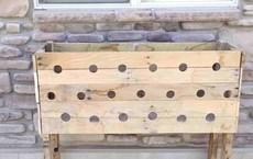 Bà mẹ khoan đầy lỗ trên mấy miếng gỗ rồi ghép lại với nhau, vài tháng sau một tác phẩm đẹp rực rỡ xuất hiện