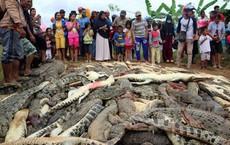 Đám đông tàn sát gần 300 con cá sấu báo thù 1 mạng người