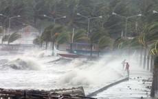 Tại sao có bão Sơn Tinh mà không có bão Thủy Tinh?