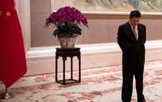 """Đàm phán Mỹ-Trung: Quan chức TQ như thể mafia, ông Tập Cận Bình """"câu giờ"""""""