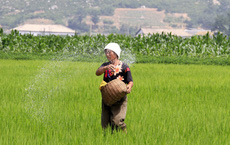 """Triều Tiên đột ngột nhắc về nạn đói những năm 1990, nhắn người dân sẵn sàng """"thắt lưng buộc bụng"""""""