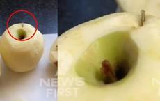 Trái cây Úc điêu đứng, người tiêu dùng hoang mang khi phát hiện một loạt các mặt hàng dâu tây, táo và chuối chứa kim khâu bên trong