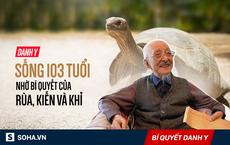 Danh y bậc thầy 103 tuổi: Bí quyết sống thọ chỉ gói gọn trong 3 việc đơn giản dễ áp dụng