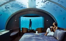 Khách sạn dưới đáy biển đầu tiên trên thế giới vừa được Á hậu check-in: Giá thuê 1,1 tỷ/đêm, mỗi lần nhận không quá 9 khách