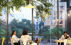 Soya Garden: Thế lực đáng gờm thách thức ngôi vương mở chuỗi của The Coffee House và Highlands, tham vọng đưa sản phẩm đậu nành ngang tầm cà phê, trà sữa