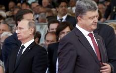 Kẹt giữa EU-NATO-Nga, Ukraine rơi cảnh oái oăm: Lựa chọn cái ít xấu nhất từ những cái xấu