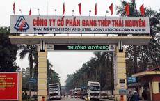 Vì sao 5 cựu lãnh đạo thép Việt Nam liên quan dự án Gang thép Thái Nguyên bị bắt?