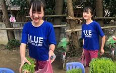"""Đầu tuần, cô bé bán rau rừng """"duyên ơi là duyên"""" khiến dân mạng xôn xao tìm danh tính"""