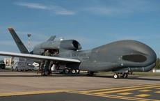"""Vụ bắn rơi máy bay của Mỹ không chỉ là kỳ tích mà còn là """"kho báu"""" đối với Iran"""