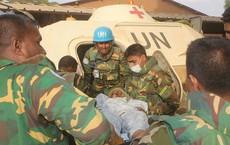 Tấn công ở Mali, 10 lính mũ nồi xanh thiệt mạng