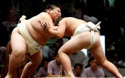 Giá đắt phải trả của những cậu nhóc mang trong mình giấc mơ thành võ sĩ sumo