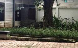 Người đàn ông tự thiêu, chết trong tư thế ngồi ở công viên trung tâm TP.HCM