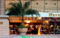 Công nhân lau kính khách sạn 5 sao Sheraton rơi xuống đất tử vong