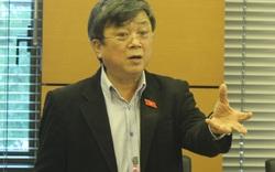 """ĐBQH đề nghị giám sát Formosa: """"Dân ăn không ngon, ngủ không yên"""""""