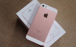 iPhone SE giảm giá 2-3 triệu đồng