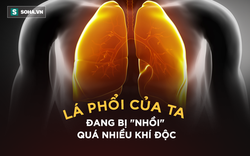 """Giáo sư Nguyễn Hữu Ninh chỉ rõ 5 chất độc """"lửng lơ"""" đe dọa 3 triệu người nội thành Hà Nội"""