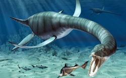 Thủy quái khổng lồ nhất dưới biển Scotland: Xơi tái 7 con cá voi cùng lúc!