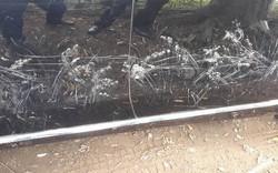 Xe Mercedes bị chó cào nát chỉ vì bóng sạch tới mức soi gương được