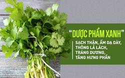"""Tiết lộ loại rau thơm được xem là """"dược phẩm xanh"""" làm sạch thận, ấm dạ dày, tráng dương"""