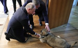 """Thăm Serbia, TT Putin đã nhận được bất ngờ gì khiến ông phải thốt lên 3 chữ """"đáng yêu quá""""?"""