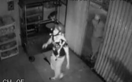Video: Mùng 2 Tết, 4 tên trộm phá cửa lấy cắp xe Exciter