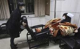 Dịch cúm A/H7N9 minh oan cho một nghiên cứu gây tranh cãi