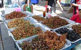 Thưởng thức những món côn trùng chiên tại Thái Lan
