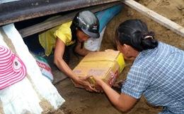 Quảng Ngãi: Nữ phóng viên tử nạn khi tác nghiệp bão số 14