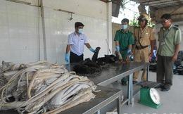 TP.HCM: Tăng cường kiểm tra vệ sinh an toàn thực phẩm dịp cuối năm