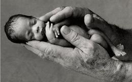 Thư gửi bố của một bào thai bị phá