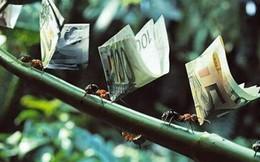 Những câu nói bất hủ về tiền