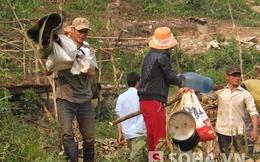 Truy quét gần 1.000 vàng tặc ở Nghệ An