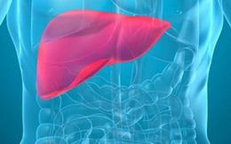 9 dấu hiệu bạn đã bị ung thư gan giai đoạn đầu
