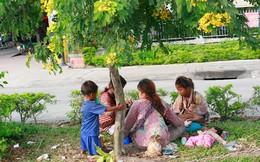 Chăn dắt trẻ ăn xin