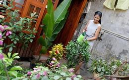 Ghé thăm những ngôi nhà bình dân của sao Việt