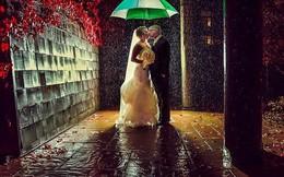 Những bộ ảnh cưới 'trăm năm có một' hút hồn người xem