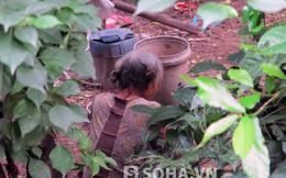 Clip: Người phụ nữ dựng lều ở với mộ cha mẹ tại Hà Tĩnh