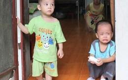 Thành ủy Hà Nội yêu cầu tiếp tục điều tra vụ chùa Bồ Đề