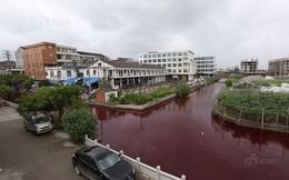 """Kinh ngạc dòng sông sau một đêm thành """"sông máu"""""""