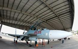 Chiến lược của Việt Nam khi chuyển từ MiG sang Su