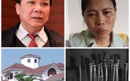 """Mưu kế """"cái đinh gỉ"""" và chuyện dinh thự của gia đình ông Trần Văn Truyền"""